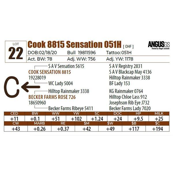 Cook 8815 Sensation 051H