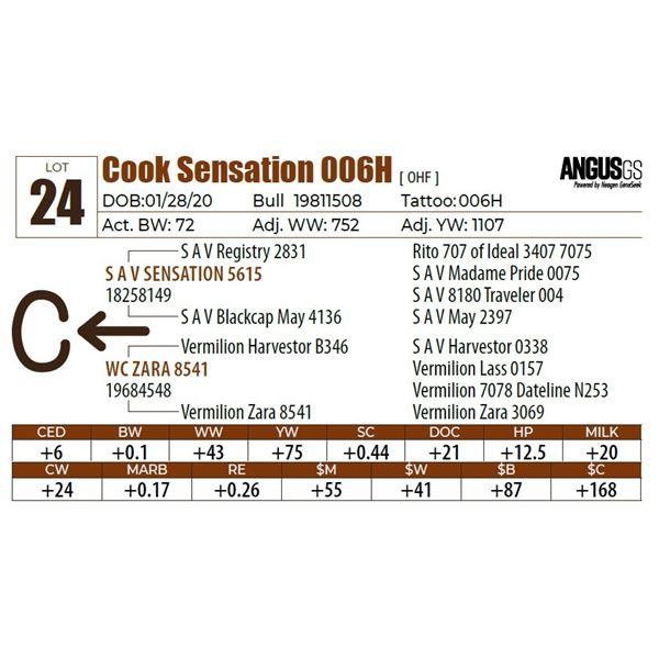 Cook Sensation 006H