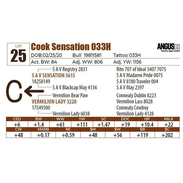 Cook Sensation 033H