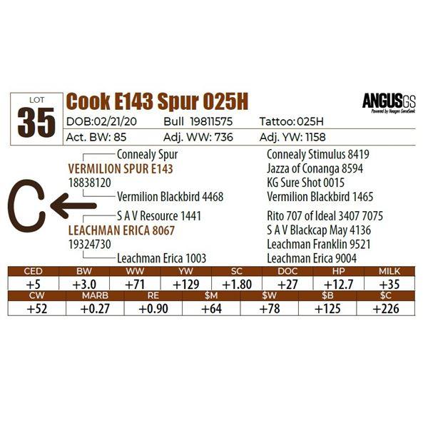 Cook E143 Spur 025H