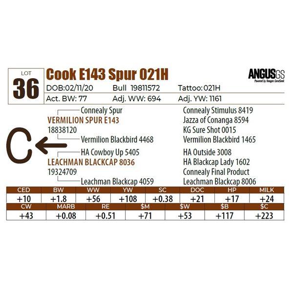 Cook E143 Spur 021H