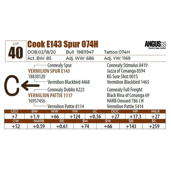 Cook E143 Spur 074H