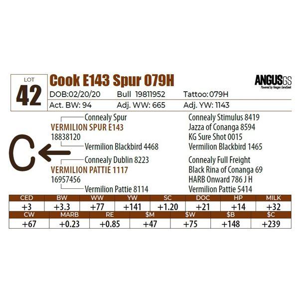 Cook E143 Spur 079H