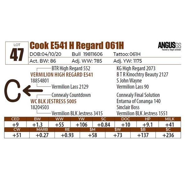Cook E541 H Regard 061H