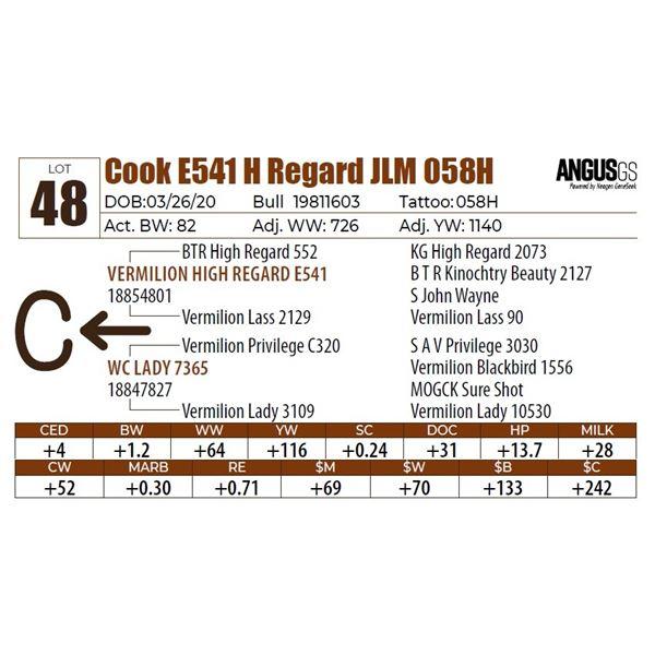 Cook E541 H Regard JLM 058H