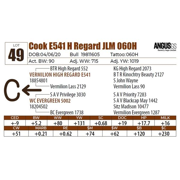 Cook E541 H Regard JLM 060H