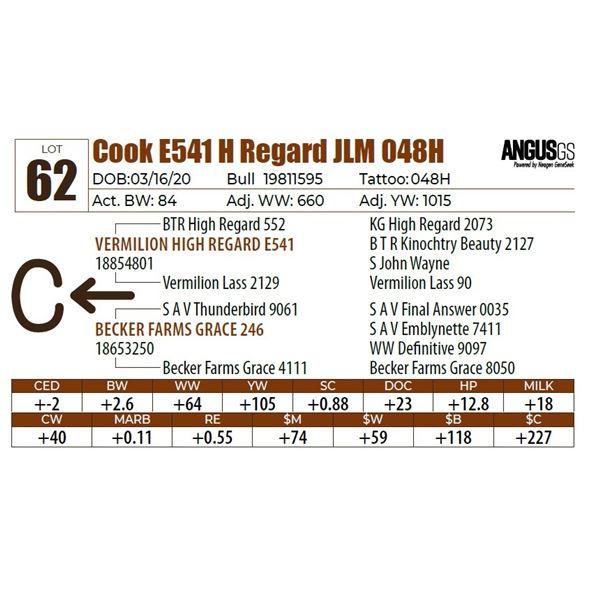 Cook E541 H Regard JLM 048H
