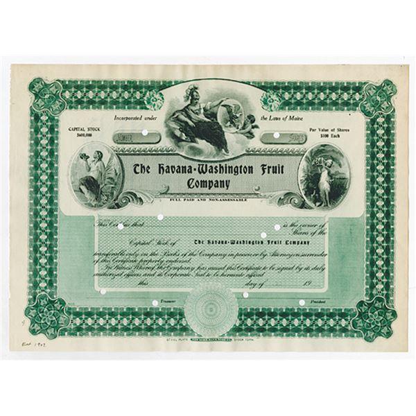 Havana-Washington Fruit Co. 1907 Specimen Stock Certificate.