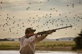 Travel First Horizons Dove Hunt
