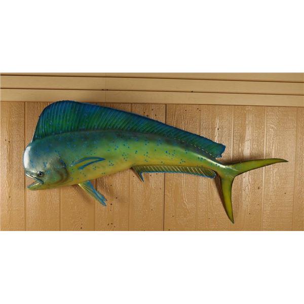 Dorado Fish Mount