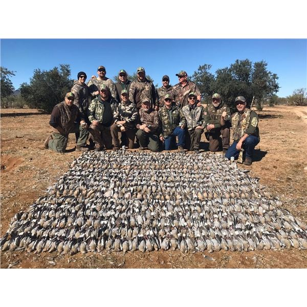 3-Day Dove and Duck Hunt for 1 Hunter in Mexico