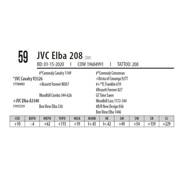 JVC Elba 208 [ DDP ]