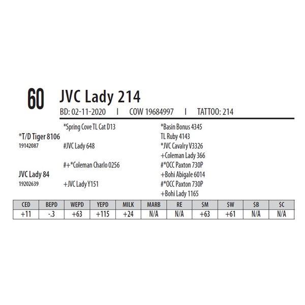 JVC Lady 214
