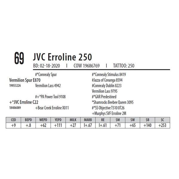 JVC Erroline 250