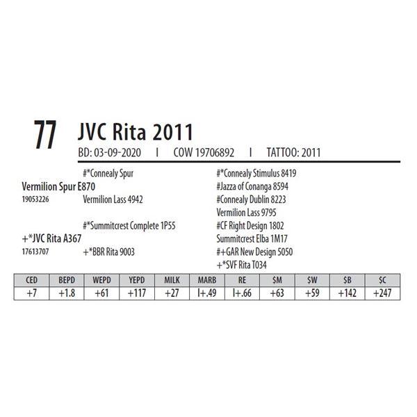 JVC Rita 2011