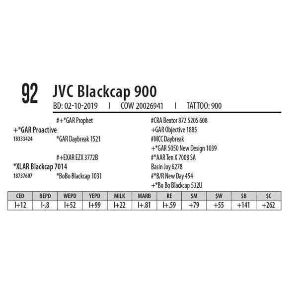 JVC Blackcap 900