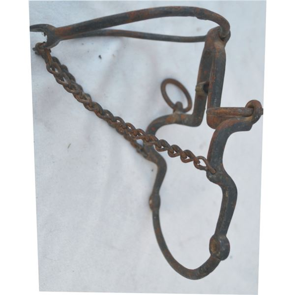 Mexican ring bit
