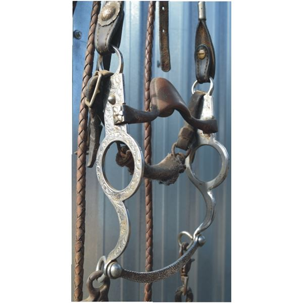 bridle with Tietjen stainless steel bit on good headstall