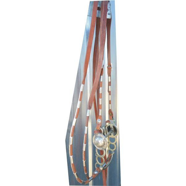 bridle with Visalia polo pattern bit
