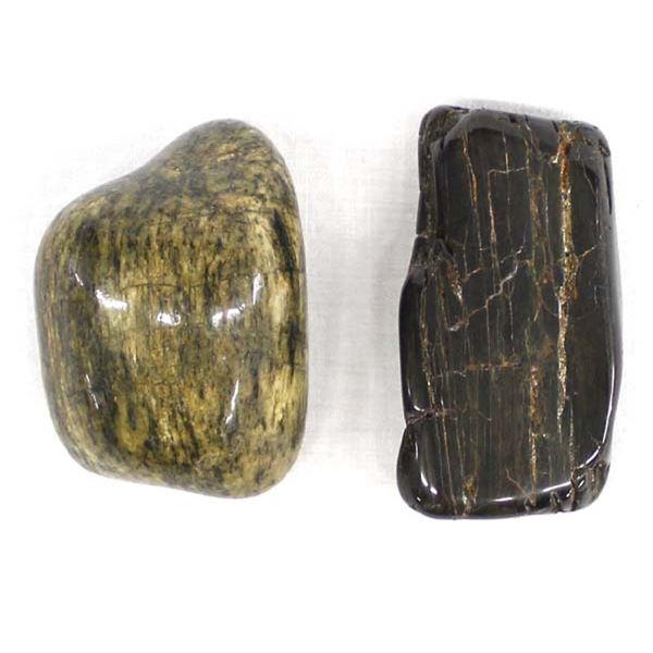 2 Pieces of Polished Petrified Wood