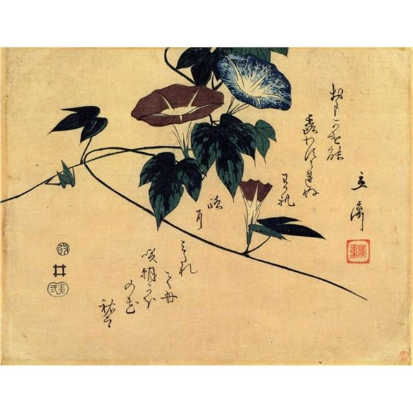 Hiroshige Morning Glory