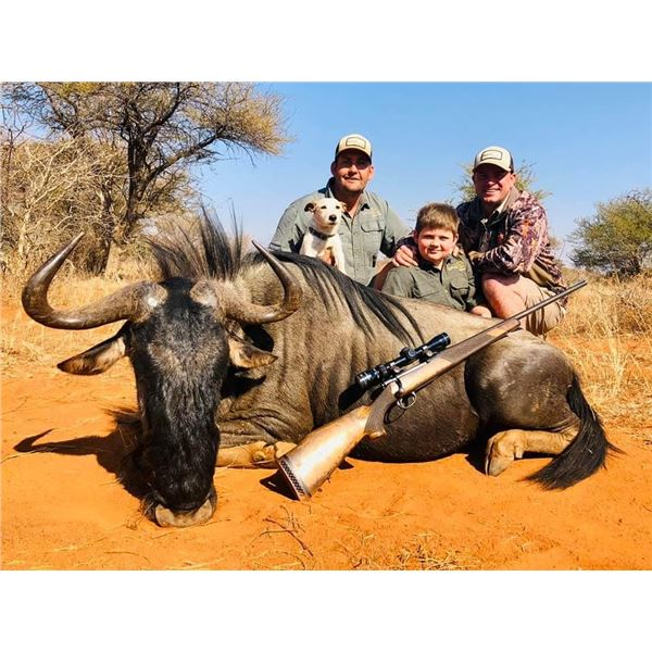 IMPALA, AND Trophy BLUE WILDEBEEST HUNT IN SOUTH AFRICA FOR TWO HUNTERS