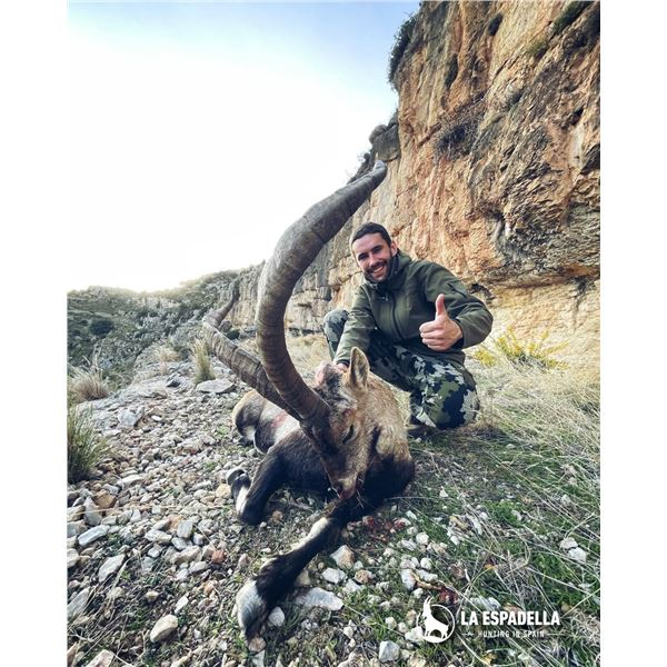 3 DAY/4 NIGHT BECEITE IBEX HUNT FOR ONE HUNTER AND ONE NON-HUNTER in Spain