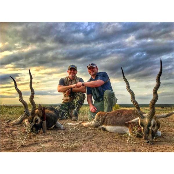 5 Day Argentina Safari for 3 hunters