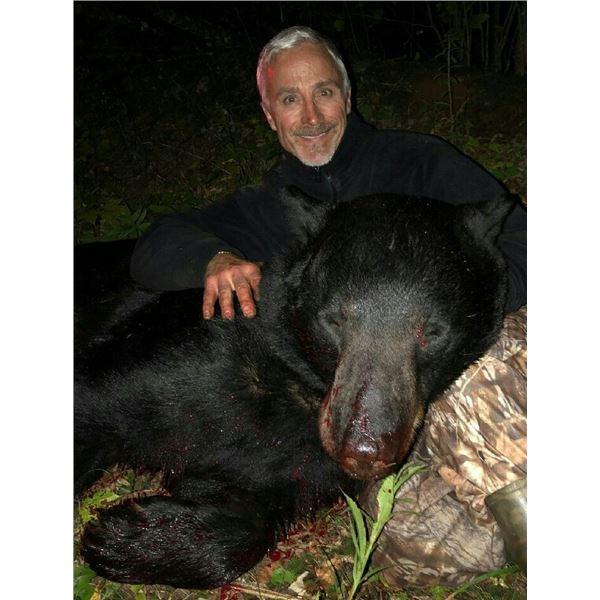Minnesota Trophy Black Bear Hunt