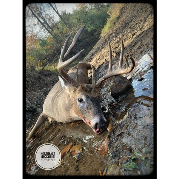 5-Day Archery/Crossbow Whitetail Hunt for 2 Hunters