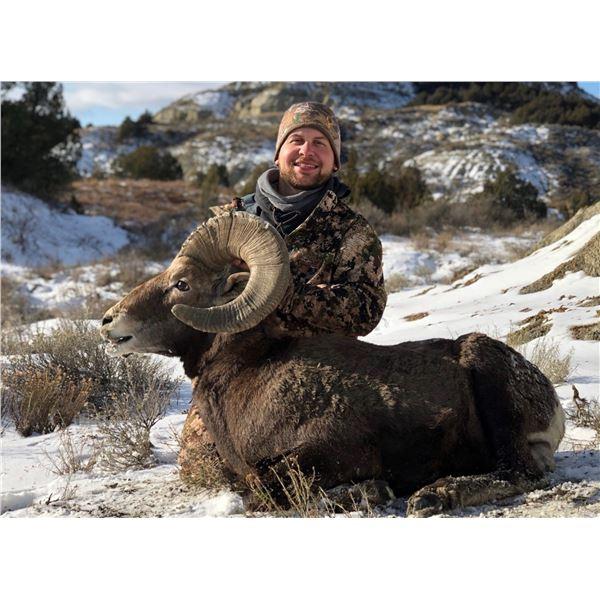 NORTH DAKOTA ROCKY MOUNTAIN BIGHORN SHEEP LICENSE