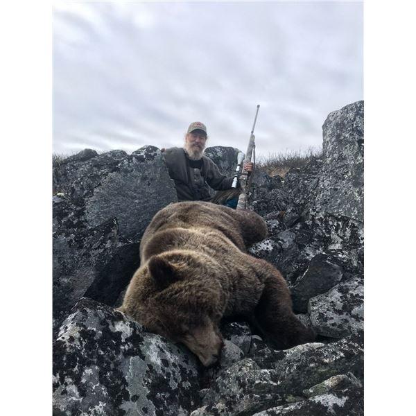 Yukon Interior Grizzly Hunt