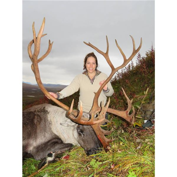 15-Day Alaska Combo Hunt for Dall Sheep, Brown/Grizzly Bear, Caribou, Black Bear and Wolf