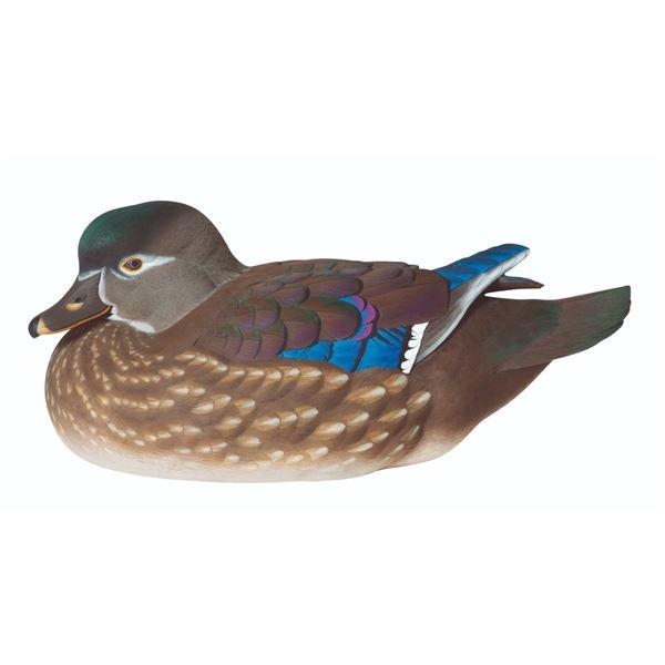 Wood Duck Hen Decoy