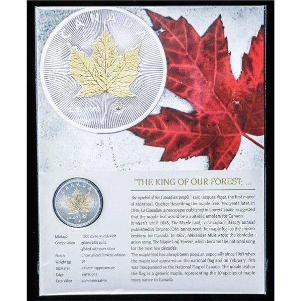 The King of Our Forest The Maple Leaf 24kt Gilded