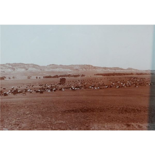L. A. Huffman (1854-1931) sepia toned original photograph, Herd Moving From Cash Creek on Powder Riv