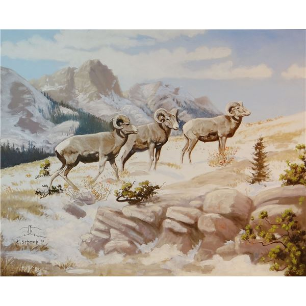 Elmer Schock original oil painting, Rams On The Rocky Mountain Front