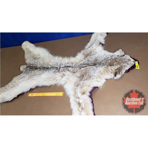 "Lynx Fur Rug (46""W x 44""L)"