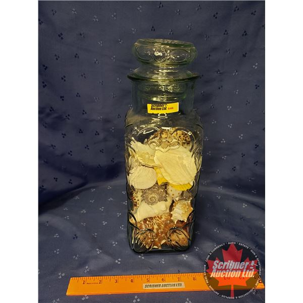 "Canister Jar w/Sea Shells (13-1/2""H)"