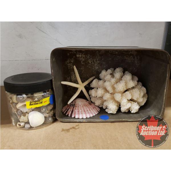 Vintage Ship Tin w/Corral, Star Fish & Shell & Jar Sea Shells