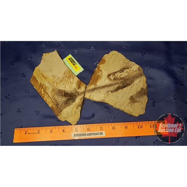 Sand Stone Rock (2pcs)