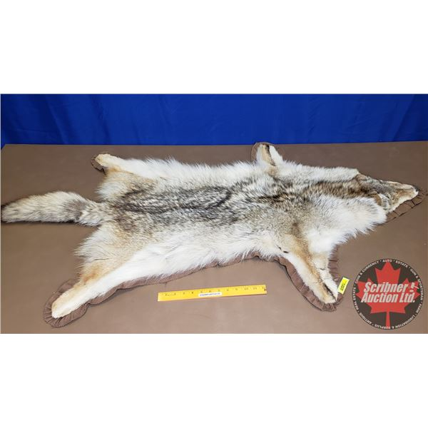 """Coyote Rug (38""""L x 31""""W) (Canadian Buyers Only)"""