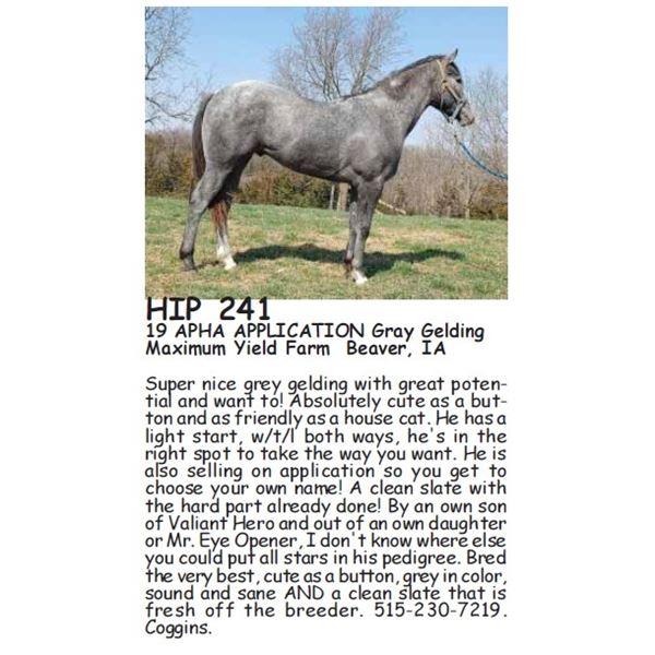 HIP 241