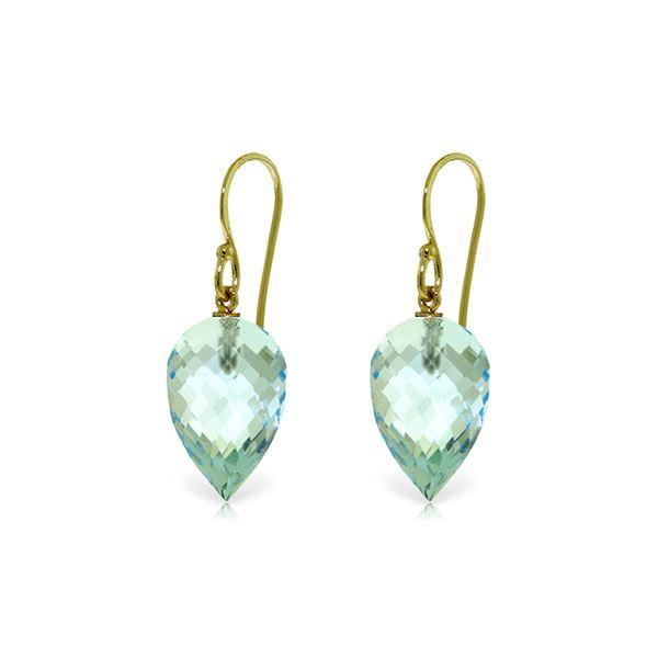 Genuine 22.5 ctw Blue Topaz Earrings 14KT Yellow Gold - REF-44K5V