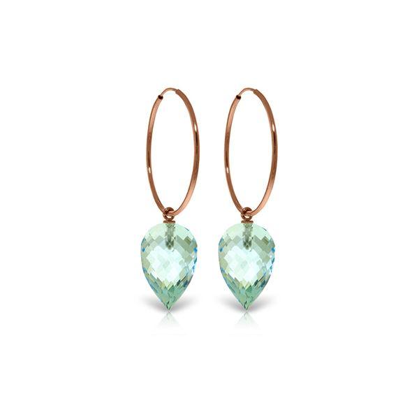 Genuine 22.5 ctw Blue Topaz Earrings 14KT Rose Gold - REF-54X9M