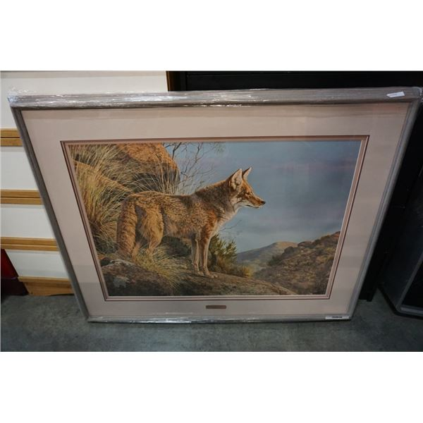 EVENING CALM - COYOTE LEP BY JORGE MAYOL 24545 - LIMITED EDITION PRINT WITH PLATE AND CERTIFICATE OF
