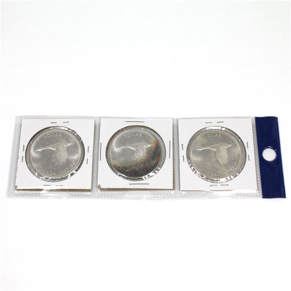 Unique Lot of 1967 Canada Silver Dollars with Rainbow Toning on One Side and Mostly White on the Oth