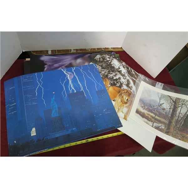 "Lot Misc. Photos/Wall Hangings/Prints 16""×20"""