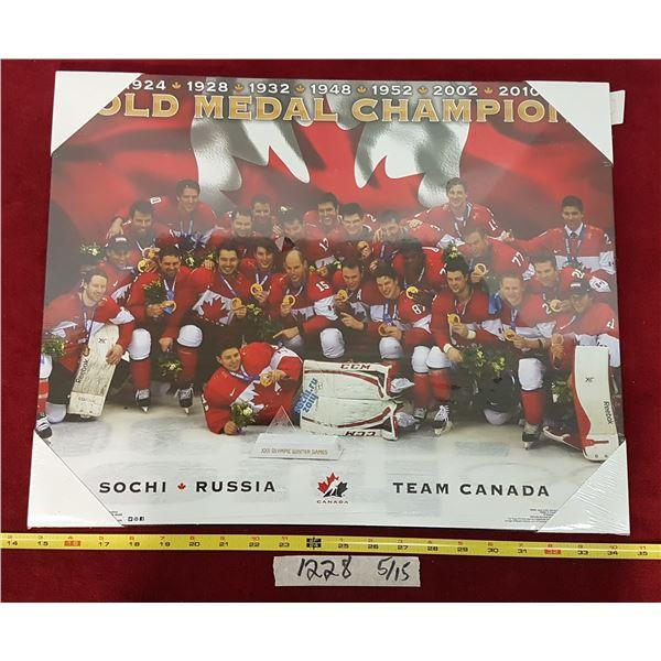 2014 Team Canada Wall-hanging