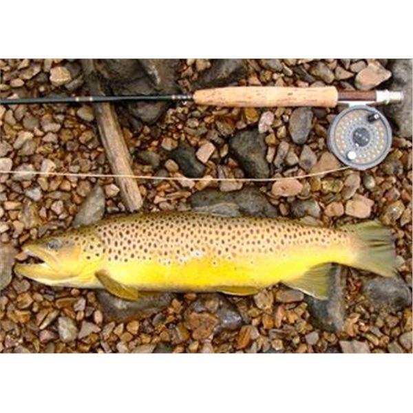 2-Night Stay, Fly Fishing & Fly Fishing School in Missouri
